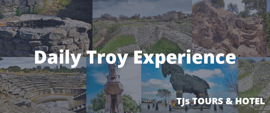 Troy Experience